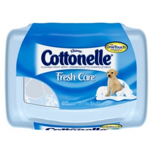 HOT TARGET DEAL! Cottonelle Fresh Care Flushable Wipes $! What a great deal from Target! Through 6/30, you will be able to grab Cottonelle Fresh Care Flushable Wipes for only $ for a package! Just stack a Target Cartwheel and a $/1 coupon with an Ibotta! Don't forget to check out all the Target deals and matchups before Read More.