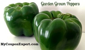 Creative uses for Garden Peppers!!