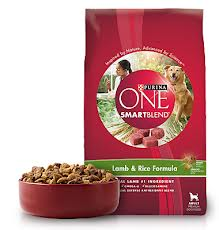 Purina ONE Dog Food just $.25 per bag starting February 3rd!! WHAT?!