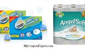 Angel Soft Deal & Sparkle Paper Towel Deal at Publix through 1/31!!