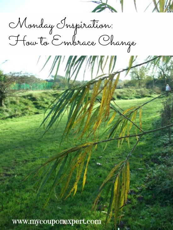 Monday Inspiration: How Can We Embrace Change?