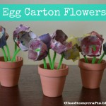 egg carton flower cover