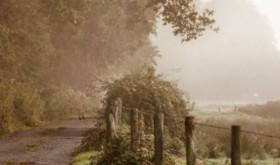 Monday Inspiration: Living a Peaceful Life