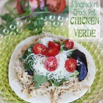 3-Ingredient-Crock-Pot-Chicken-Verde-3-web