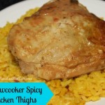 slow-cooker-chicken-thighs