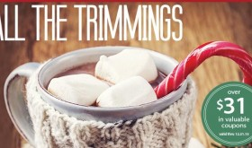 PUBLIX New Coupon Booklet All The Trimmings – printable too!