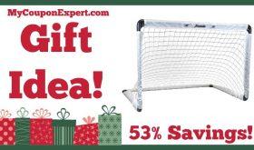Hot Holiday Gift Idea! Franklin MLS Fold N Go Soccer Goal Only $18.69 – 53% Savings!