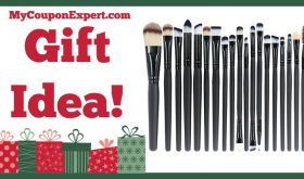 Hot Holiday Gift Idea! Professional 20 Pieces Makeup Brush Set Only $9.99 (67% Savings!!)