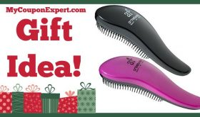 Hot Holiday Gift Idea! Art Naturals Detangling Hair Brush, 2 Pack Only $14.95 (50% Savings!!)