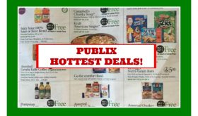 Publix HOTTEST DEALS March 23rd – 29th!  Check this out!!