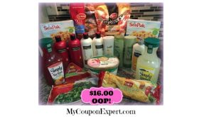 How I bought all of this for $16.00 at Winn Dixie!
