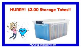 WOW!!  Storage Totes for $3.00 each!!  HURRY!!