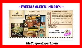 FREEBIE AT PUBLIX!!  Hurry Hurry!!  Burrito Bowls and more!