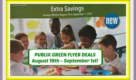 Publix GREEN FLYER DEALS August 19th – September 1st!