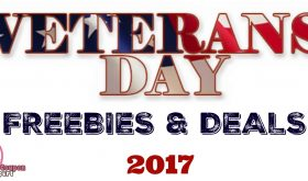 Veterans Day 2017 Freebies & Discounts!  Check it out!