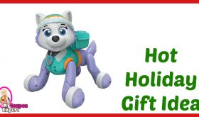Hot Holiday Gift Idea! Paw Patrol – Zoomer – Everest Only $21.49 – 60% Savings!!