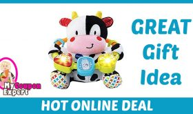 Hot Holiday Gift Idea! Baby Lil' Critters Moosical Beads Under $13.00 (74% Savings!)