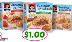Quaker Breakfast Flats or Squares $1.00 at Publix!