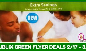Publix GREEN Flyer Deals February 17th- March 2nd!