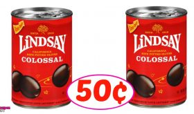 Lindsay Olives just 50¢ at Winn Dixie!  Nice!