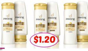 Pantene Shampoo & Conditioner $1.20 at Publix!