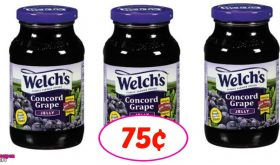 Welch's Grape Jelly just 75¢ each at Winn Dixie!