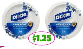 Dixie Plates just $1.25 at Publix!!