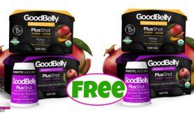 GoodBelly Probiotic Shots 4pk FREE at Publix!