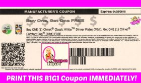 B1G1 Free CHINET Printable Coupon!  HURRY!