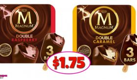 Magnum Ice Cream Bars – $1.75 at Publix with new coupon!