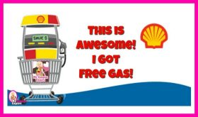 FREE GAS!  Shell Gas Rewards Network! Check this out!