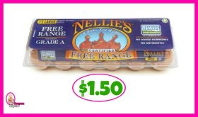 Nellie's Free Range Eggs $1.50 each at Publix!
