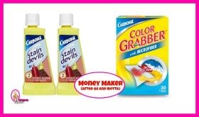 Carbona Stain Devils FREE plus a Money Maker at Publix!