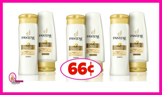 Pantene Shampoo or Conditioner 66¢ each Winn Dixie!