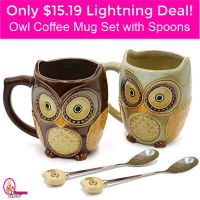 Only $15.19 Owl Mug Set with Spoons!  Lightning Deal!