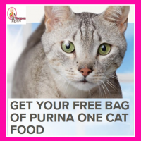 Free Purina One Cat Food Bag!  Hurry!