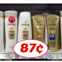 Pantene Stylers just 87¢ each at Publix!