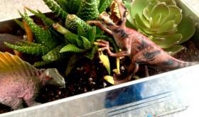 Weekend Family Fun: DIY Dinosaur Garden