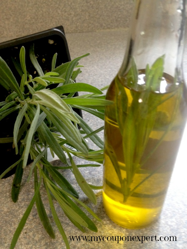 Frugal Friday Fun: DIY Summer Herb Infused Oil