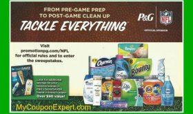 """Publix """"Tackle Everything"""" Flyer in some 8/27 papers"""