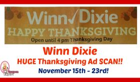 HUGE Winn Dixie Thanksgiving Ad Scan!  Browse all pages!